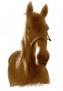 Pferd im JPG-Format handgemalt