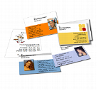Visitenkarten Druckshop: Visitenkarten mit Foto,Klappe, Rückseite