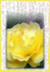 tpl07.jpg