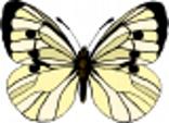 ag01035a.wmf