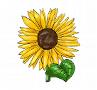 Illustrationen Frühling: Sonnenblume und viele weitere Motive