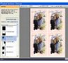 Foto Karten Hochzeit: Zum Drucken stehen viele vordefinierte Formate zur Verfügung